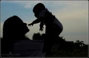 silhouette-web